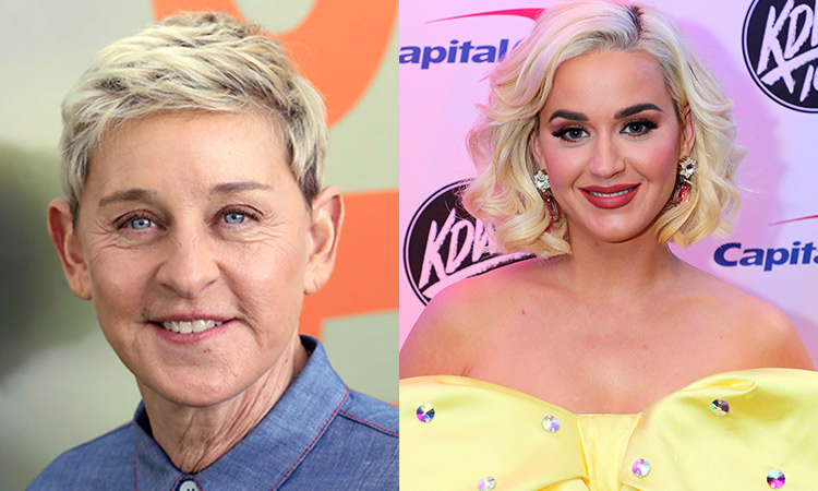 Ellen DeGeneres and Portia de Rossi`s mansion burglary was an inside job