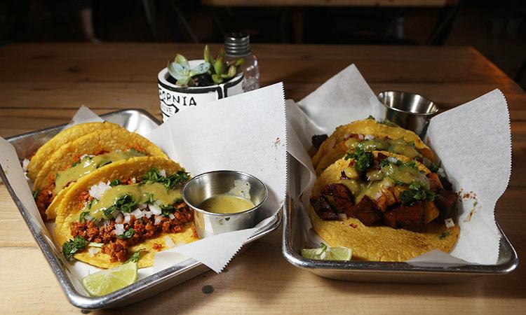 Mexican Restaurants Turn Vegan Gulftoday