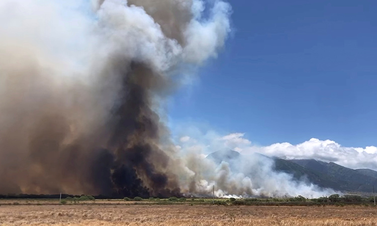 Hawaii-wildfire-main1-750