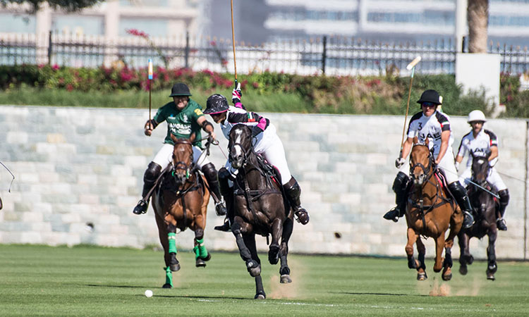 Al-Habtoor-Polo-Resort-750