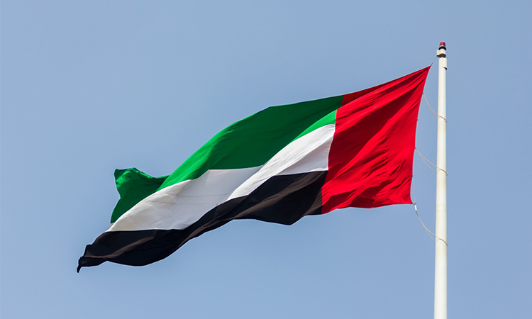 UAE strongly condemns Niger terror attacks - GulfToday