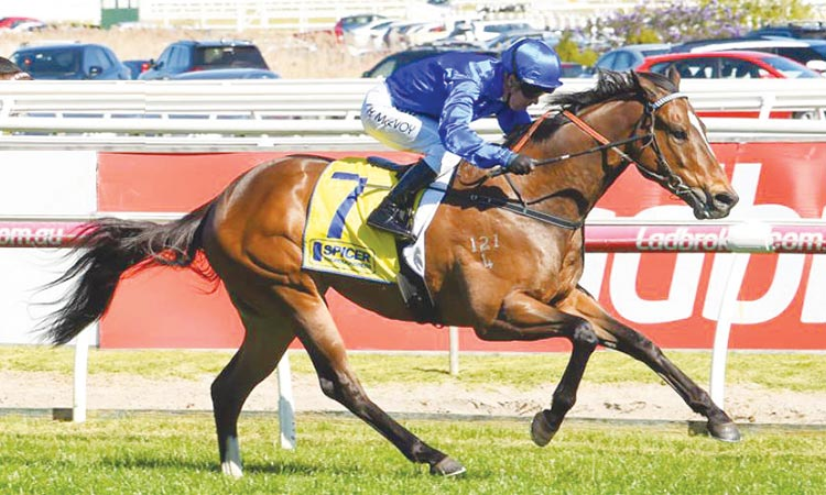 Godolphin pair ready to scale  new heights in The Everest