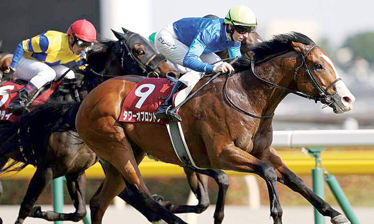 Woman's Heart races to victory  at Niigata Nisai Stakes